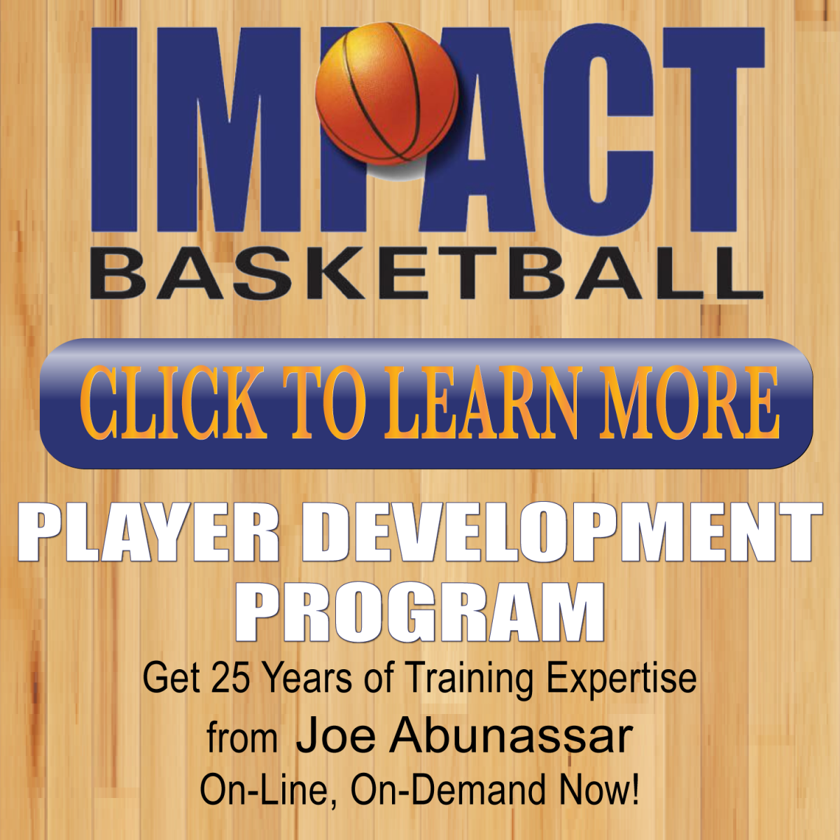 Impact Basketball Player Development Program